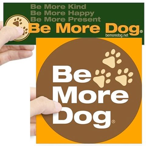 Be More Dog Badge Stickers