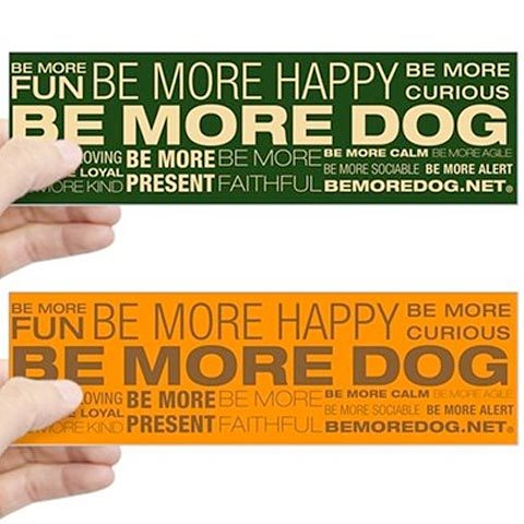 Be More Dog Beliefs Stickers