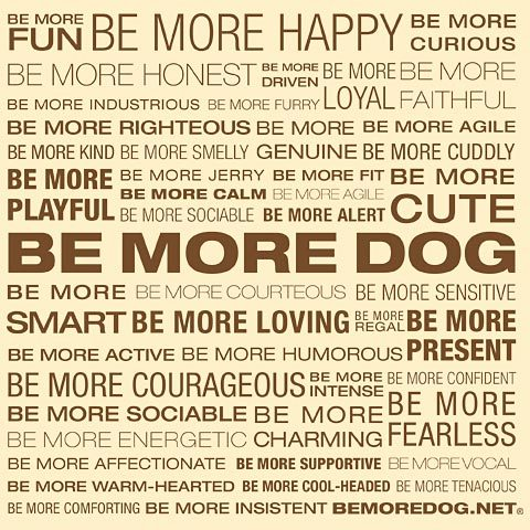 Be More Dog Beliefs Phrases