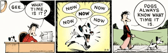 MUTTS NOW! Comic Strip