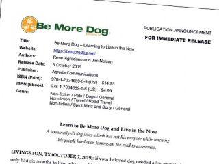 be more dog press