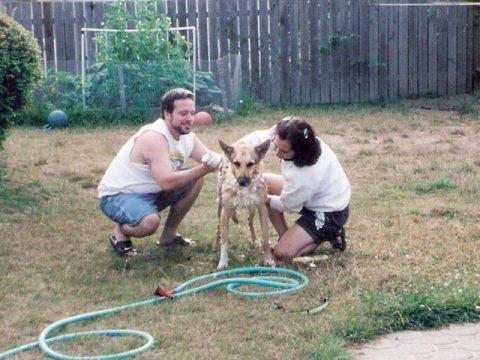 Jerry Puppy Wash