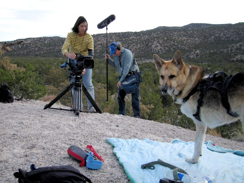 Filming Why We Love Cats and Dogs
