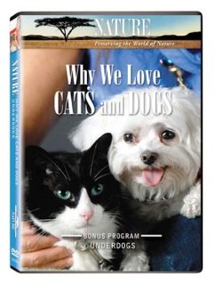 why we love cats and dogs
