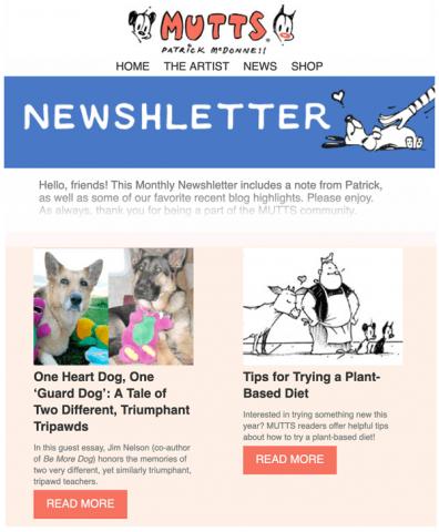 newshletter