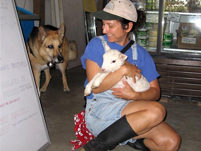 three legged farm dog