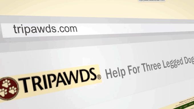 tripawds community